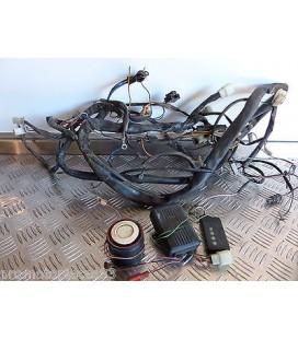 faisceau electrique + alarme scooter malaguti 125 ciak promotopieces