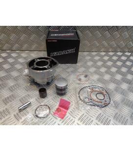 cylindre piston fonte diam 47 mm naraku moteur minarelli am6 mecaboite dt rs tzr mrt smx mrx x limit power trigger ... NK102.68